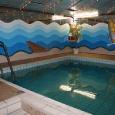 Pool 003